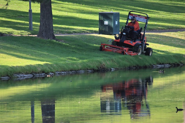 caretaker cutting grass of park on riding mower